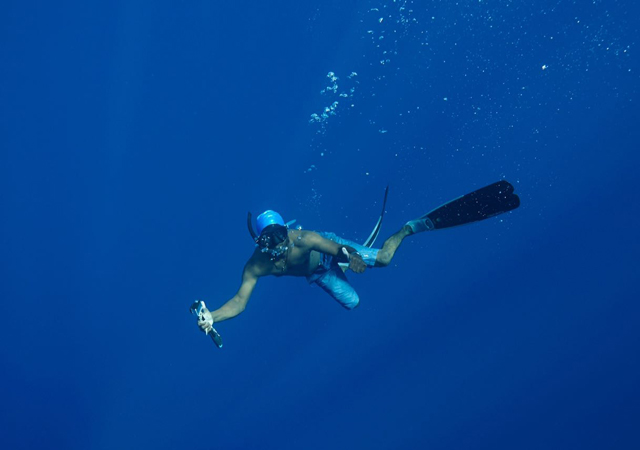 Snorkeling Tours In Mirissa